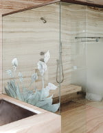Shower Glass Options
